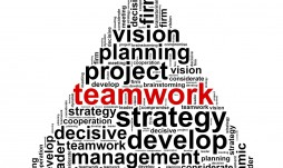 Achieving an Effective and Functioning Project Team